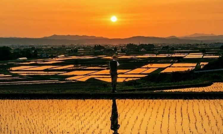 جمعية فوكوشيما الدولية تقيم مسابقة التصوير الفوتوغرافى