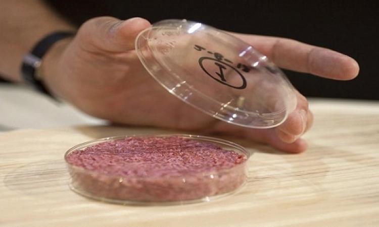 لحوم مصنعة فى المختبر للنباتيين والباحثين عن الطعام الصحى