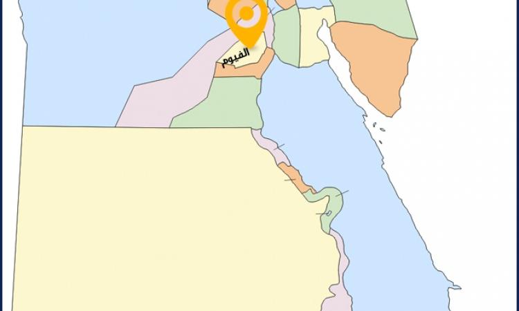 """94.9% نسبة التصويت ب""""نعم"""" علي الدستور بالفيوم"""