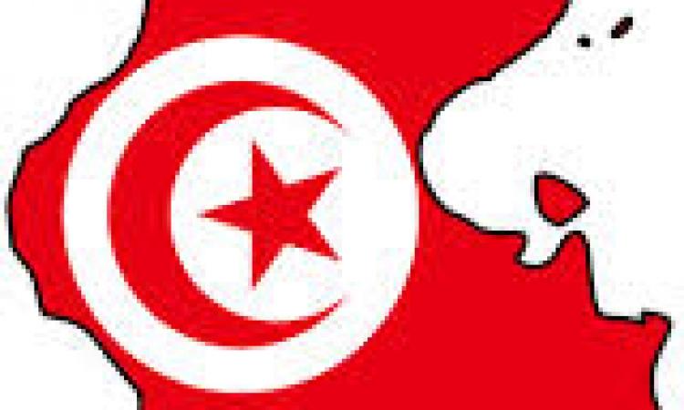 الحراك الدبلوماسي التونسي والأزمة الإقتصادية