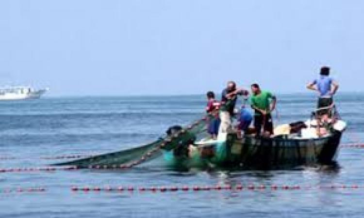 ننشر تقريراللجنة السداسية المشكلة لبحث تضرر صيادي دسوق بسبب نفوق الأسماك