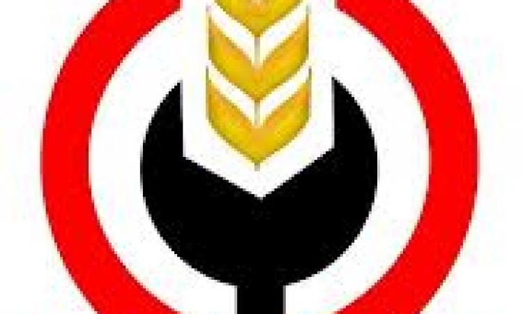 حزب التجمع :جماعة الإخوان تواصل جرائمها والجزيرة تواصل حماقاتها