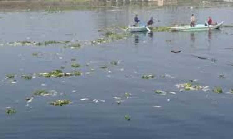 """الأربعاء..""""النيل لإعلام دمياط"""" يبحث مخاطر الأقفاص السمكية على مياه النيل"""