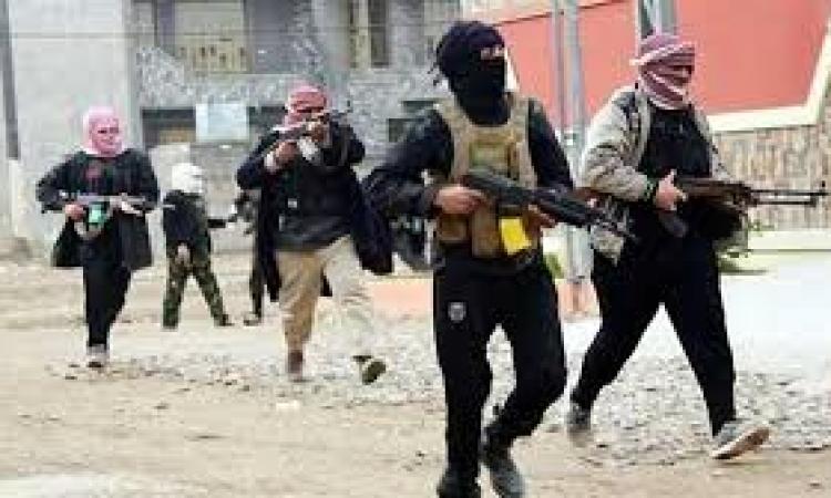 روسيا اليوم : مقتل 50 مسلح من داعش فى العراق