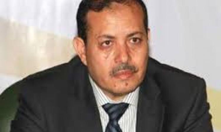 """تأجيل دعوى سب وزير الاعلام السابق ل """"السعيد"""" لجلسة 29 مايو"""