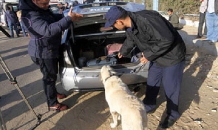 الاستعانة بالكلاب البوليسية لتأمين محيط اللجنة العليا للانتخابات