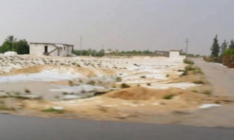مديرية الزراعة تحصر الزراعات والمزارعين المتضررين من الظروف الجوية الأخيرة في العريش