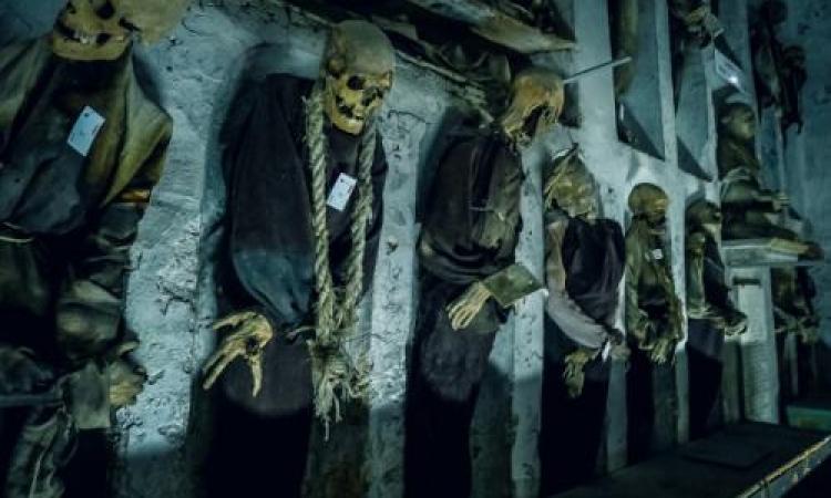 بالصور.. سر سرداب الموتى في مدينة باليرمو بإيطاليا