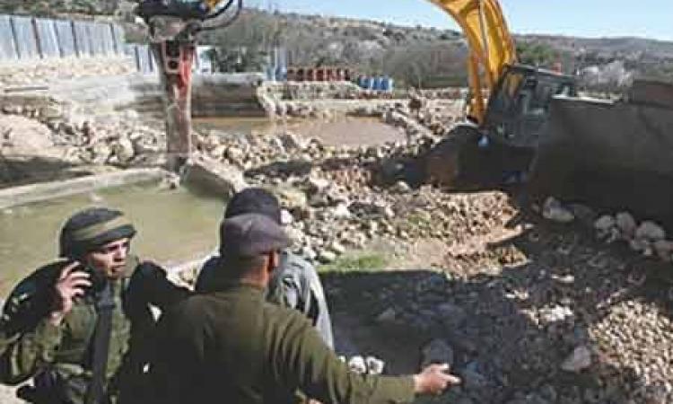 الخارجية: ندعم الملف الفلسطيني.. ونسعى لوقف الاستيطان الإسرائيلي