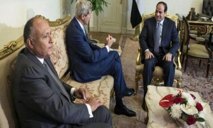 شكري : السيسي وكيري اتفقا على ضرورة دفع الإسرائيليين والفلسطينين للقبول بالمبادرة المصرية