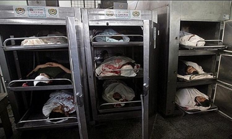 ارتفاع شهداء غزة إلى 1260 شهيدا بعد مقتل 30 شخصا صباح ثالث أيام العيد