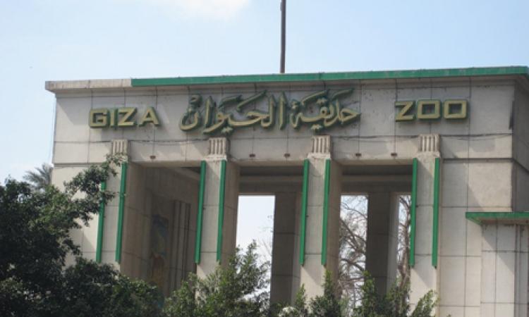 4 تحذيرات من الزراعة لزوار حديقة الحيوان فى شم النسيم.. تعرف عليها