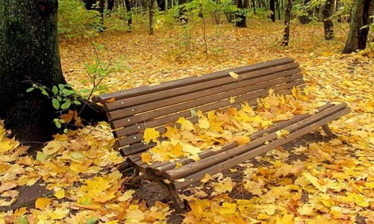 فلكيا.. طول الخريف للعام الحالى سيبلغ 93 يوماً