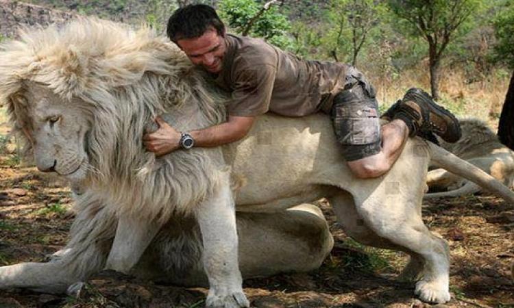 بالفيديو ..  لحظات هجوم الحيوانات على البشر بطريقة وحشية ومخيفة