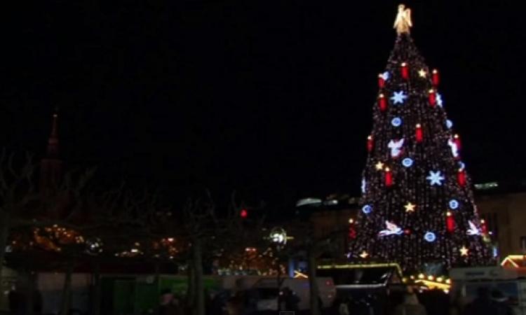 بالفيديو .. أطول شجرة كريسماس فى العالم بارتفاع 45 مترا