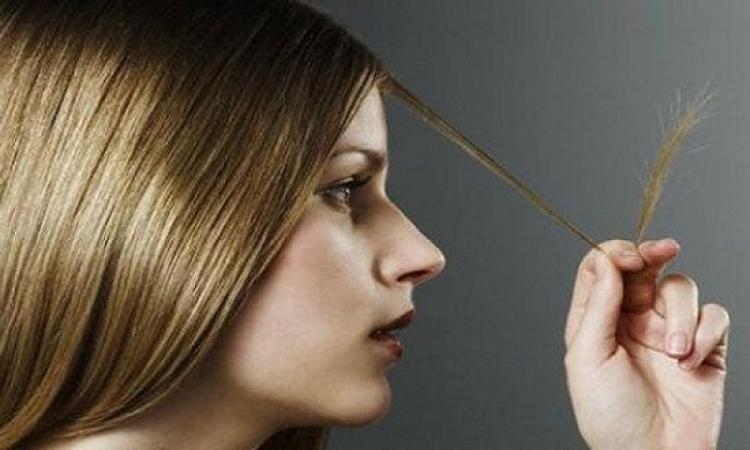 ماسكات منزلية للتخلص من تقصف الشعر