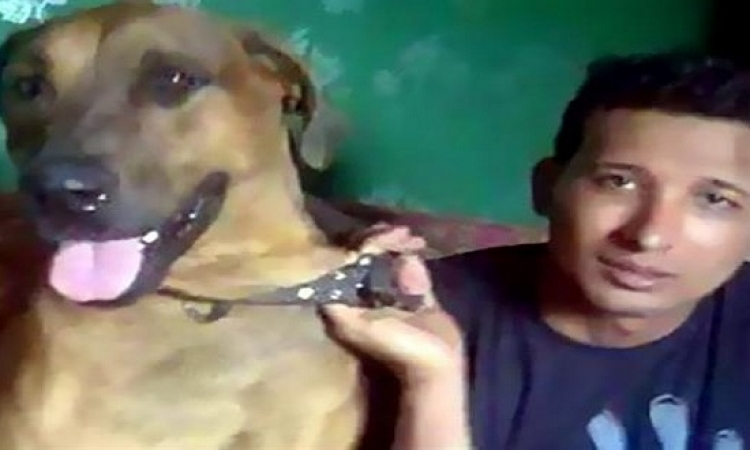 صاحب الكلب المقتول: سامحنى ياماكس كنت هموت لو دافعت عنك