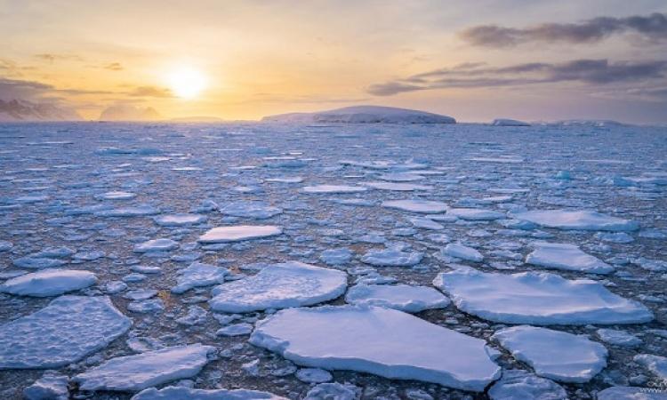 رحلة إلى القطب الجنوبى .. أنتاركتيكا الجميلة وثلوجها الساحرة