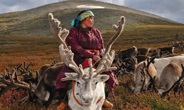 بالصور .. شعب اسيا الوسطى وعلاقته بحيوان الرنة