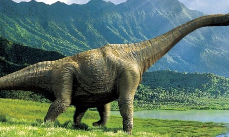 تعرف على مدينة الديناصورات بـ10 آلاف بيضة