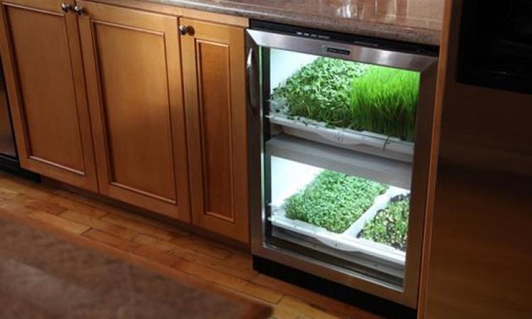 """ازرع خضروات والفواكه داخل المنزل بـ """"Urban Caltivator"""""""