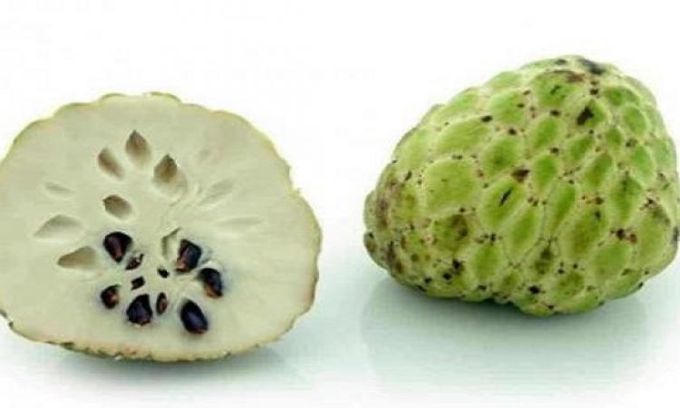 تعرفى على فوائد فاكهة «القشطة» للحامل والجنين