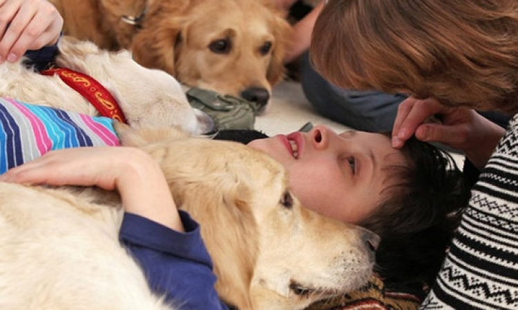 5 أنواع من الحيوانات لها تأثير ايجابى فى علاج الإنسان