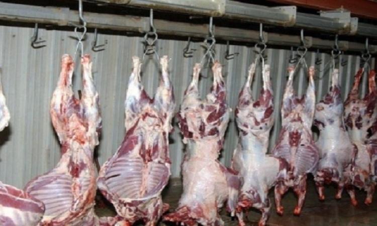 الزراعة تعلن الطوارىء استعدادًا لشهر رمضان
