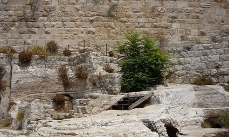 طفل روسى يعثر على خاتم سيدنا داود فى القدس