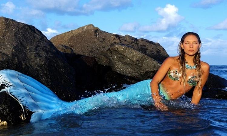 بالفيديو والصور .. عروس البحر تسبح مع الحيتان واسماك القرش فى الاعماق