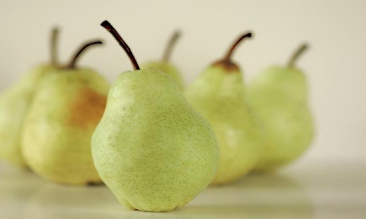 تناول الكمثرى يساعد على إنقاص الوزن