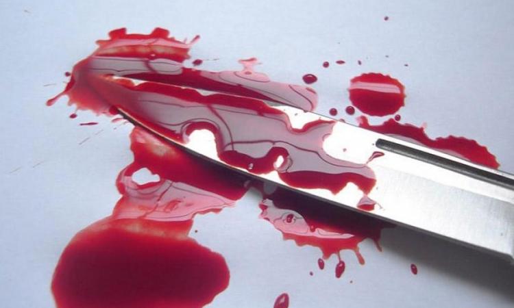 بالتفاصيل .. مقتل ابنة رجل أعمال وإصابة ابنة عمها