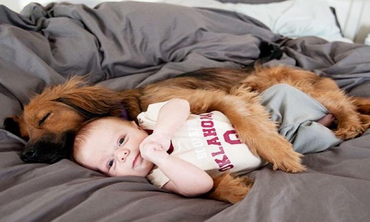 صور مذهلة لصداقة الاطفال بالحيوانات .. ايه الطعامة دى !!