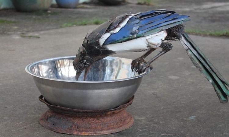 بالصور .. عندما تدب الحياة فى المعادن .. حيوانات وطيور !!