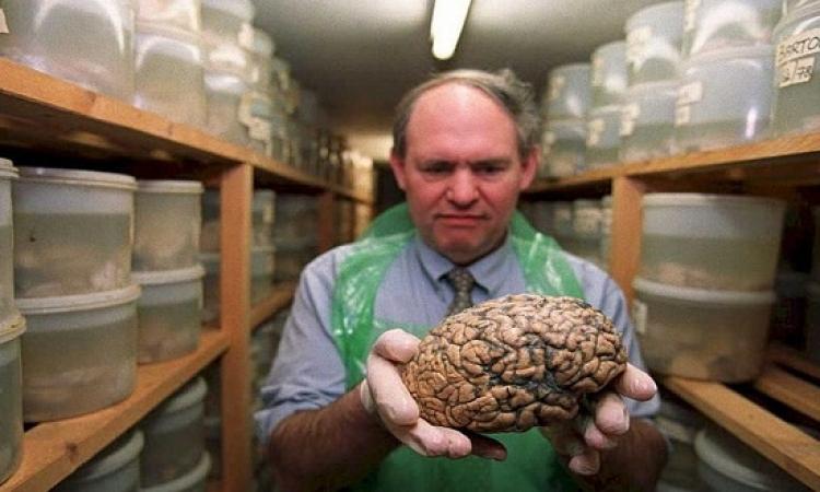 آخر كلام .. الدراسات تؤكد : لا يوجد مخ ذكرى ومخ أنثوى