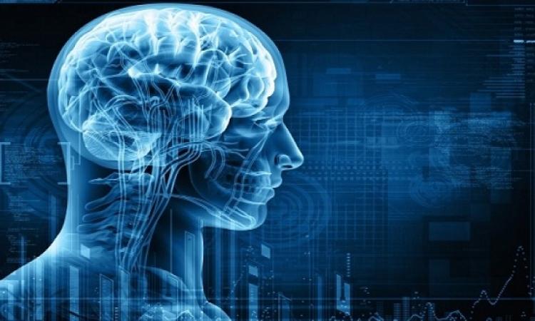 اكتشاف أعصاب مسؤولة عما يسمى بالحاسة السادسة
