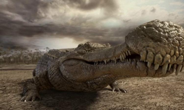 بالصور .. اكتشاف تمساح ما قبل التاريخ العملاق بصحراء تونس