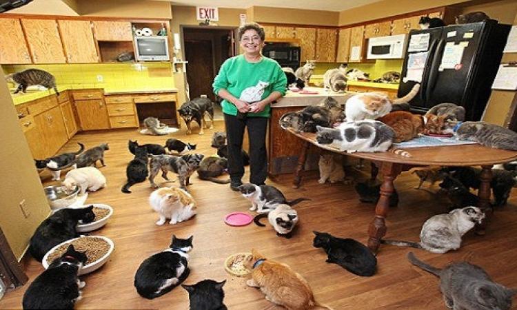 بالصور .. امرأة تعيش مع أكثر من ألف قطة فى منزل واحد