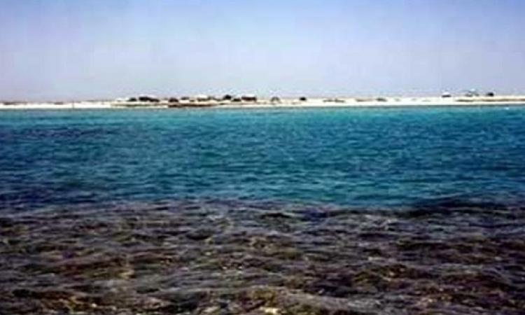 تلوث بترولى على شواطئ رأس غارب فى البحر الأحمر