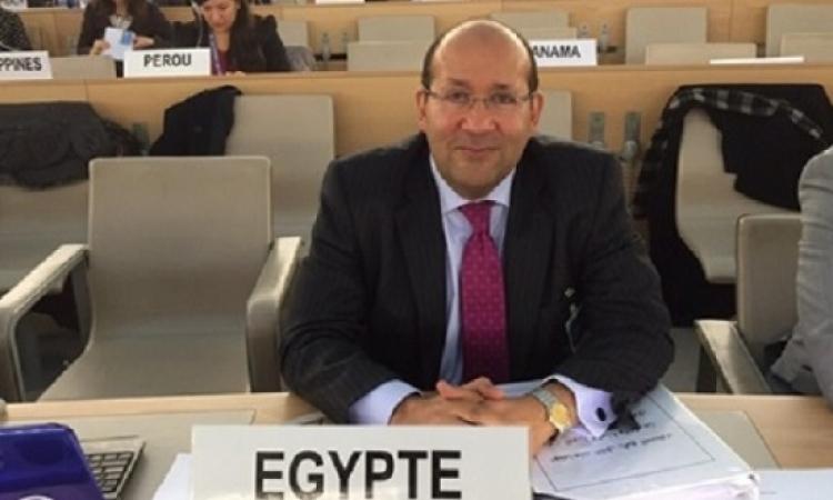 هشام بدر: الصين تؤكد دعم مصر لرئاسة مجلس الأمن في مايو المقبل
