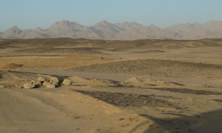 """""""الجويسرى الكويتية"""" تبحث فرص الاستثمار فى الصحراء الغربية"""