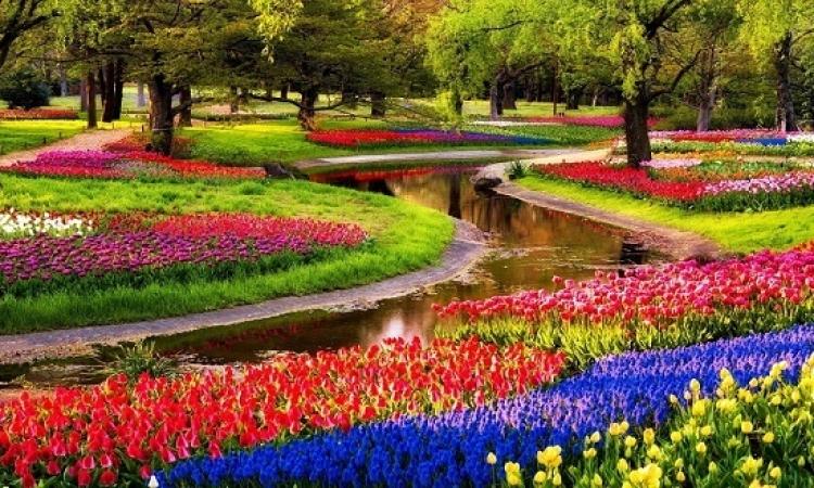 كوكينهوف .. أجمل حدائق العالم .. عندما ترتدى الطبيعة فستانها الملون !!