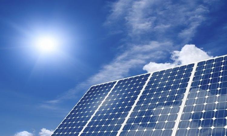 سمارت فلور .. زهرة ذكية تمد الناس بالطاقة الشمسية