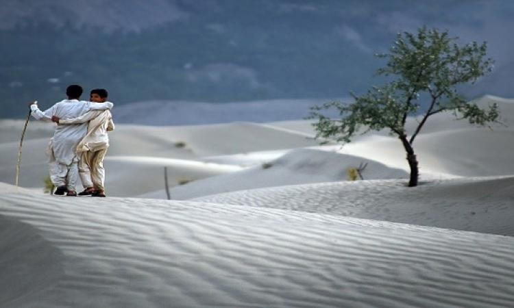 قصة وعبرة .. الصداقة التى حفرت على صخور الصحراء