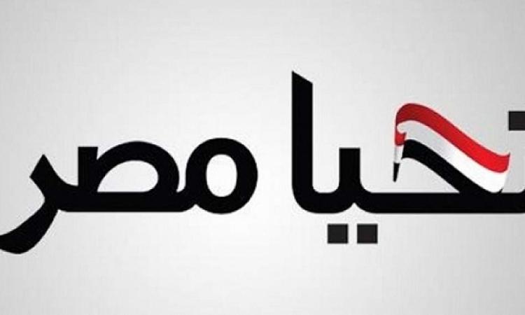 """""""تحيا مصر"""" عن بيان الحكومة التركية: خيوط المؤامرة باتت واضحة"""
