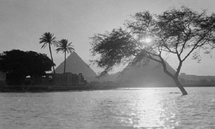 ديلى ميل تحتفى بمصر وتنشر صوراً للقاهرة عام 1900