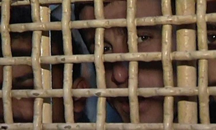 أكثر من 1300 أسير فلسطينى يبدأون اضرابًا عن الطعام