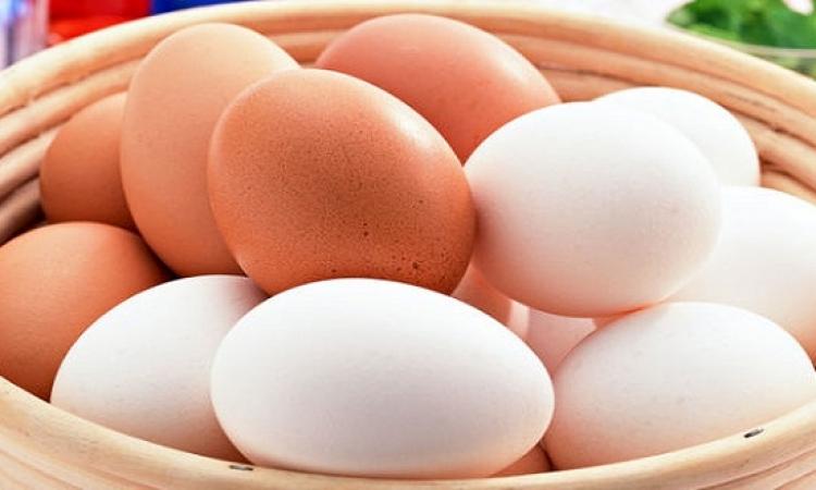 ما الفرق بين البيض البنى والبيض الأبيض ؟