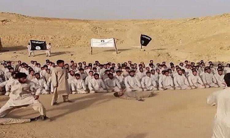 بالفيديو .. تدريبات عناصر داعش استعداداً لتخريب مصر يوم 11/11