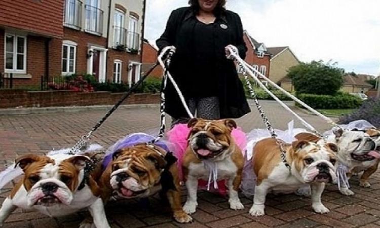 اقتناء الكلاب كبيرة الحجم يساعد على إنقاص الوزن